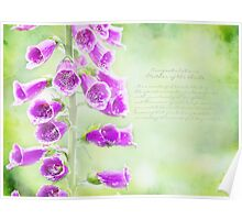 Mother Of The Bride Greeting Card Poster
