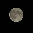 May Supermoon by Shaun Ashmead