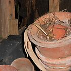 The Potting Shed by Jacqui1957