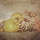 Apples and Flowers by Denise Abé