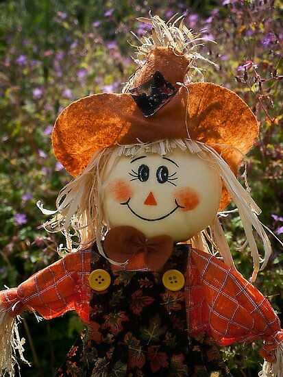 Smiley Scarecrow by Paul Barnett