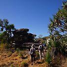 Trekking through the wonderful Arnhem Land terrain by georgieboy98