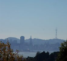 San Francisco from the Hill by missk8