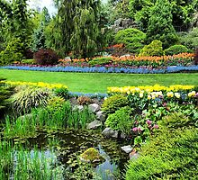Queen Elizabeth Park by RubyTuesday72