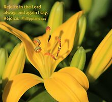 Rejoice in the Lord alway: and again I say, Rejoice. by Stephen Thomas