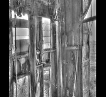 Shearing Shed by Charlo