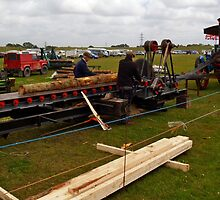 Wood Sawing by Mike Streeter