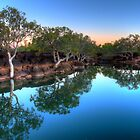 An Out Back Billabong - On the Nicholson River at Doomadgee by Stephen  Nicholson