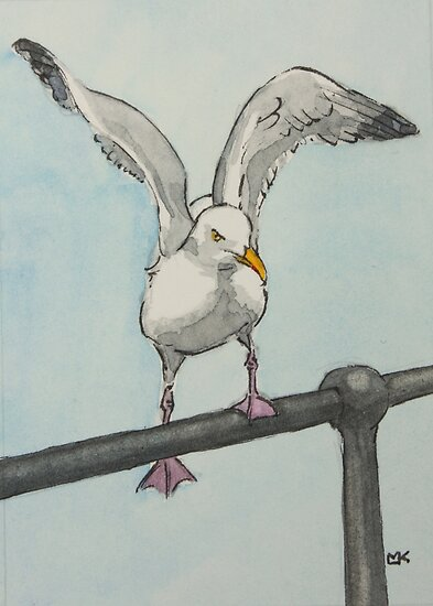 Cornish Seagull by Lynne  Kirby