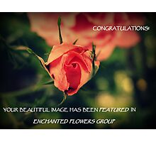 For Banner Challenge Photographic Print