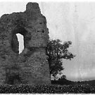 Ludgershall Castle by Mother Shipton