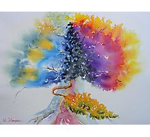Aquarelle Live Oak Photographic Print