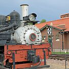 Royal Gorge Train and Depot  by Robert Meyers-Lussier