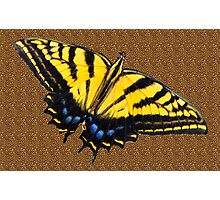 Butterfly on Leopard Print  Photographic Print