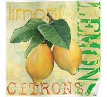 Froyo Lemons Poster