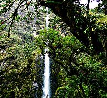 El Chorro Waterfalls Of Giron by Al Bourassa