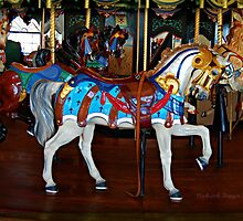 Carousel at he Pier by lisa roberts