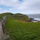 The Nobbies Phillip Island Vic Australia by PhotoJoJo