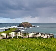 Storm Brews over Nobbies Phillip Island Vic Australia by PhotoJoJo