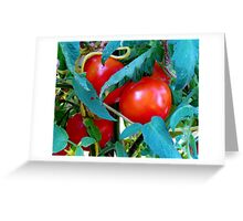 Ripe Red Tomatoes Greeting Card