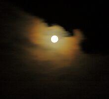 moon light. southern hemsphere. by tim buckley   bodhiimages