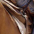 Rustic Cowboy by kurrawinya