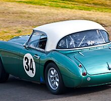 1959 Austin Healey 3000 Mk1 by Tom Row