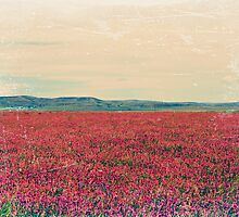 Fields of Heaven by Leanna Lomanski