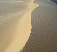 Sand Spine by Anton Gorlin