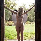 Barn Angel No.8 by David Robinson