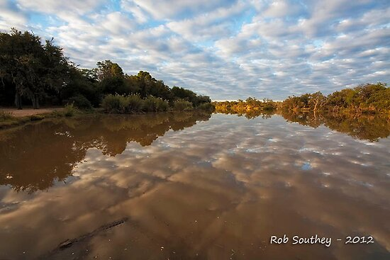 Reflecting on Crocodiles by Rob  Southey
