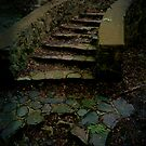 The Stairs  by gjameswyrick