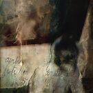 The Mirror  by gjameswyrick