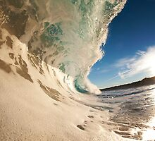 Sandy and Frothy by COImages