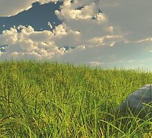 Grassy Field Panoramic by Aaron Campbell