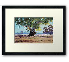 Australian Gum Tree Framed Print