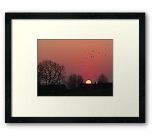 Sunrise in the Park Framed Print
