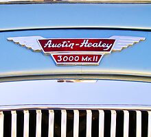 1963 Austin Healey Mark III BJ8 Grille Emblem by Jill Reger