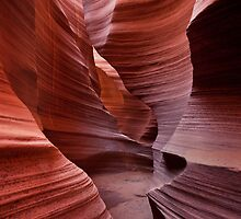 Rattlesnake Canyon curves by Owed to Nature