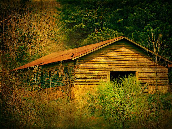 Deep in the woods there sits an abandoned farm by Scott Mitchell