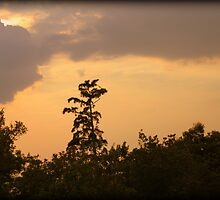 Setting Sun Behind the Clouds by WeeZie