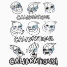 Calibrations by derlaine