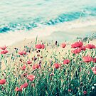 Sea of Poppies by BelleFlores