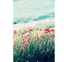 Sea of Poppies Photographic Print