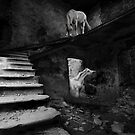 Hide and Seek  by Raymond Kerr