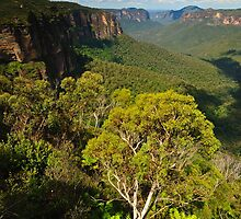 Green Blue Mountains by Anton Gorlin