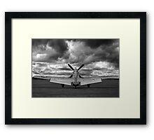 Mustang Dawn Framed Print