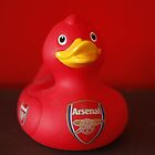 Arsenal Duck by Courtney Taylor
