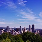 Pittsburgh in Color by dgweathers