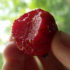 Summer of Strawberries by mezzotessitura